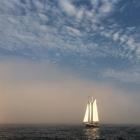 Surprise escape the fog